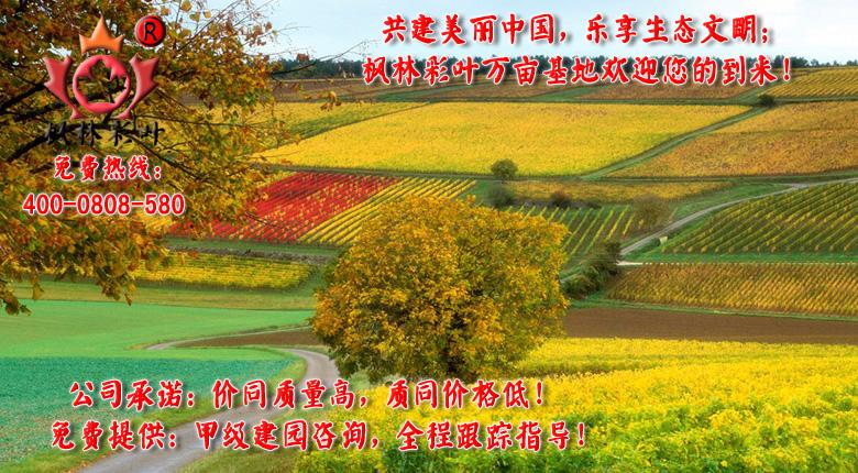 共建美丽中国,乐享生态文明!.jpg